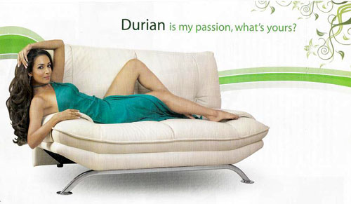Company:Living room Furniture:Durian is my passion what is yours
