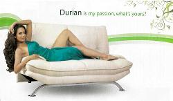 Allahabad : Living room Furniture : Durian is my passion what is yours