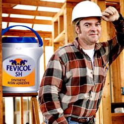 Company:Raw Material:Fevicol