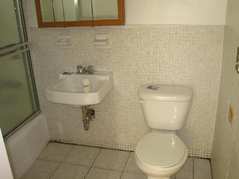 bathroom designs without bathtub