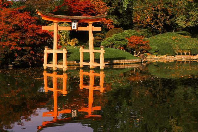 Japanese Garden Interior with ....