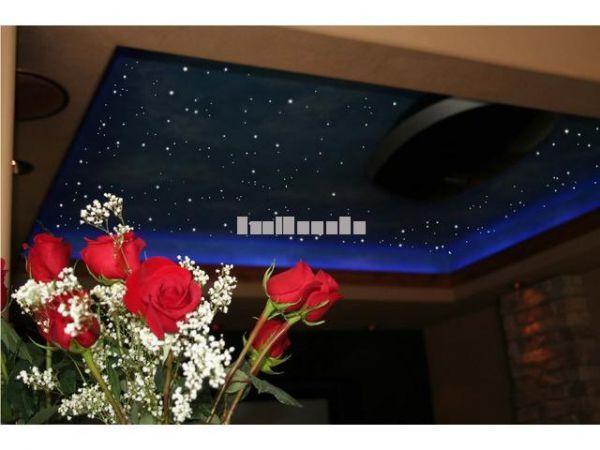 Fiber Optic Starry Ceiling