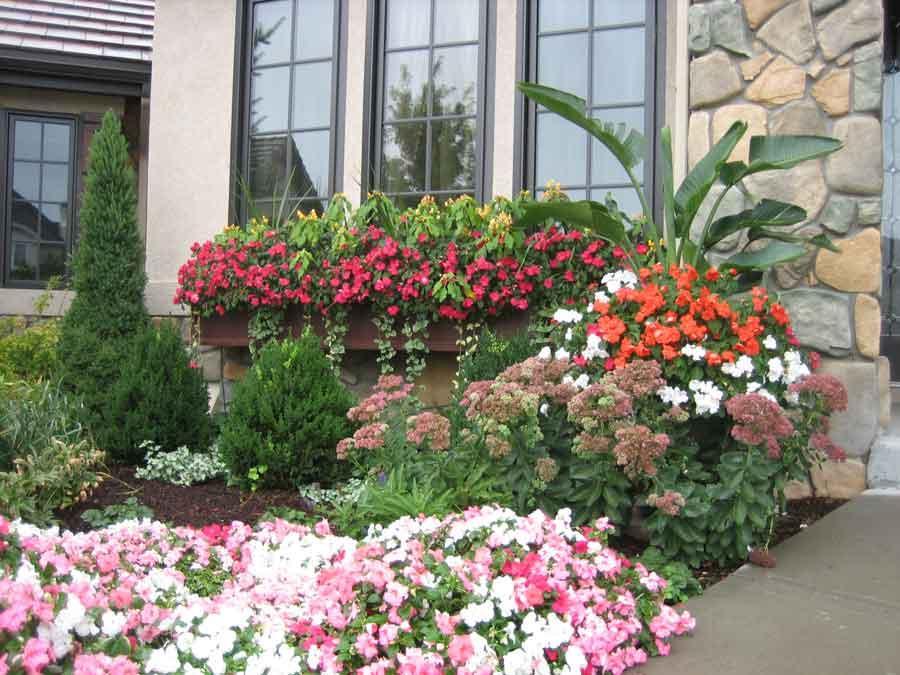 Flower bed in the garden looks....