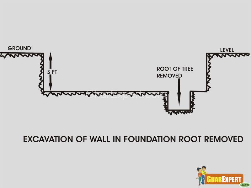 Foundation of building- remove roots from soil