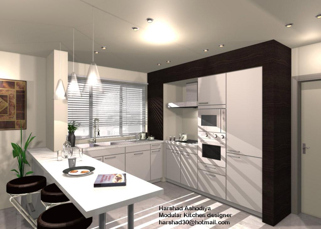 kitchen elevation design with ....