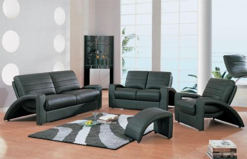 Modern Living Room Furnishing