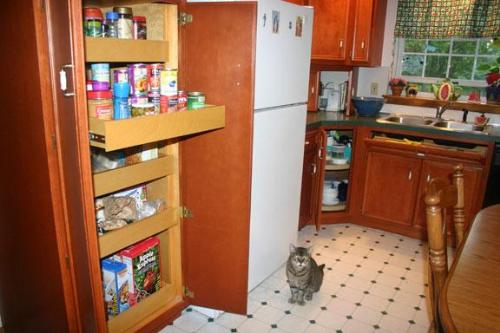 Pull-out drawers in kitchen