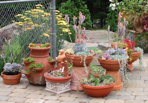 Plant containers in small space garden