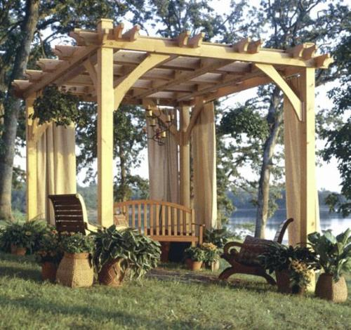 Decorate a pergola with plants