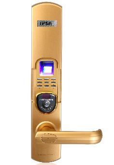 IPSA Digital Lock IP FP 01 Gold
