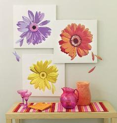 Daisy flowers Wall Decals