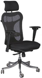 Kris Milano Erogonomic High Back Executive Chair