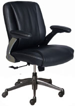 Kris Milano Medium Back Task Chair