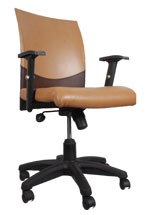 Kris Milano Low Back Designer Task Computer Chair