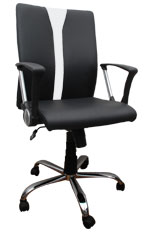 Kris Milano Twin Color Conference Chair