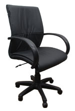 Kris Milano Mid Back Executive Leather Chair