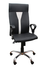 Kris Milano Twin Color Executive Chair